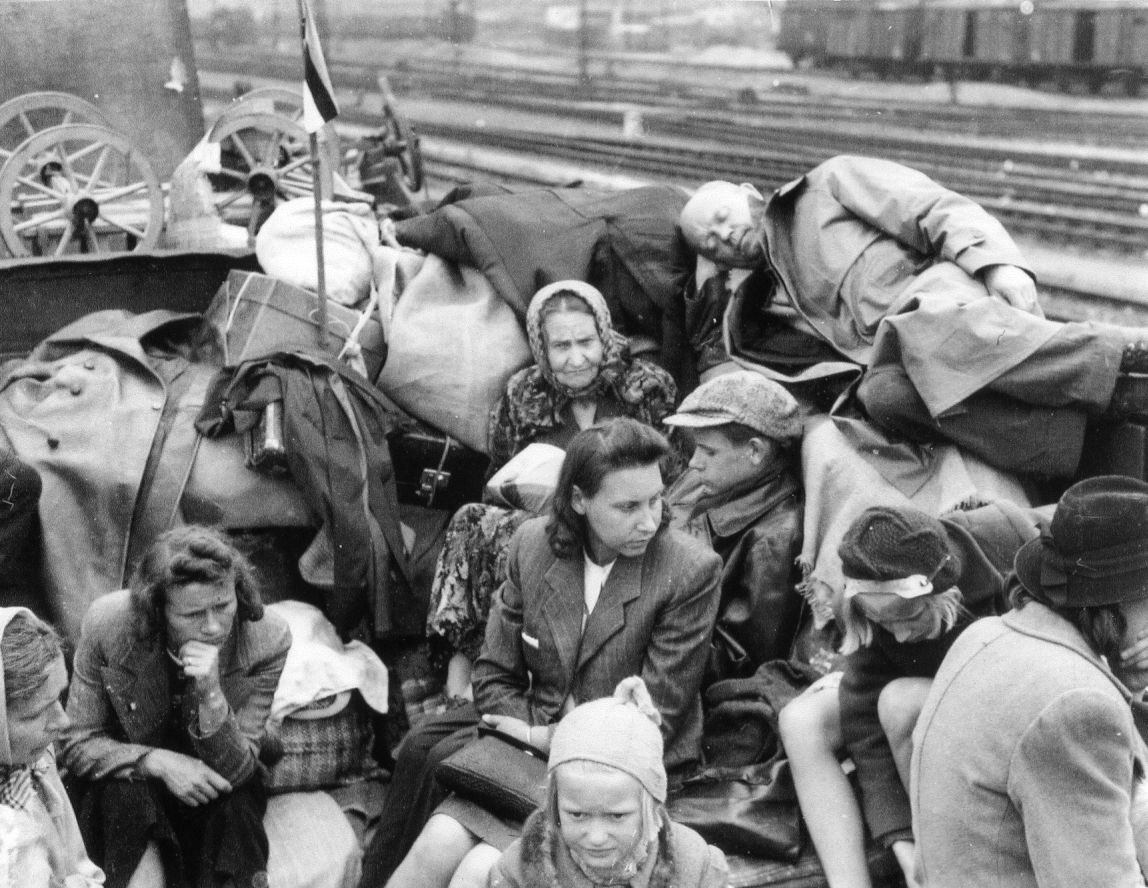 displaced persons and refugees European refugee movements after world war two  displaced persons in vienna,  refugees and stateless people are seeking homes worldwide top.